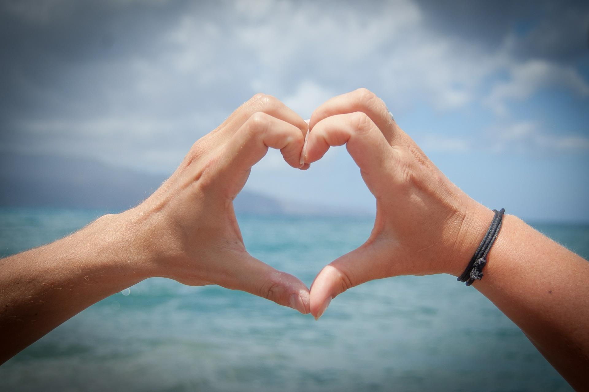 ♥の形の手