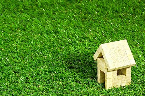 芝生とおもちゃ