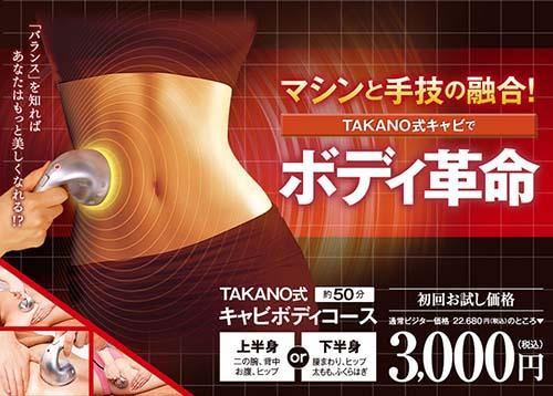 TAKANO式キャビボディ(部分/上or下半身)